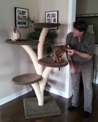 U201cIn 2007, I Was Challenged To Reproduce A Much Loved, Worn Out Cat Tree  That Was No Longer Available. So I Set Out To Make An Attractive, ...